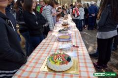 Torte-29