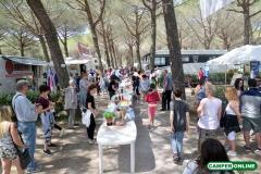 CamperOnFest-2018_027