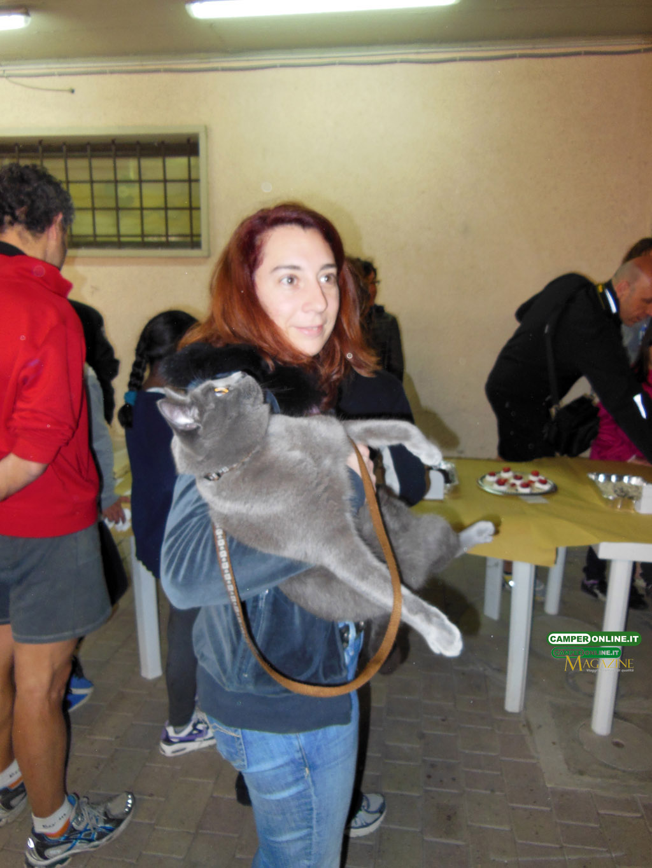 CamperOnFest-2013-torte-022