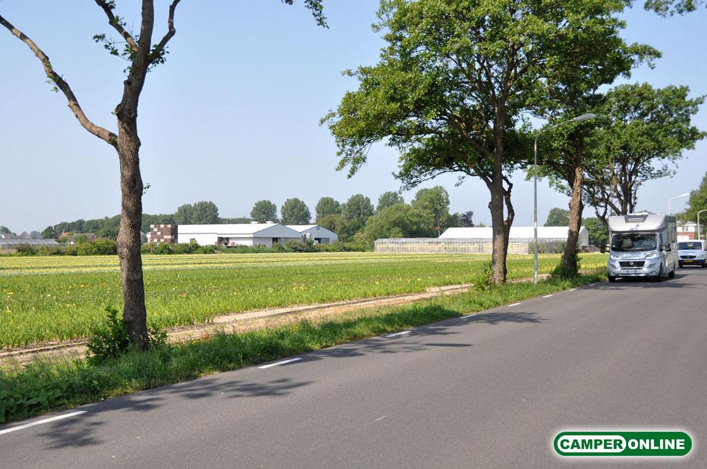 Olanda-Bollenvelden-014