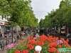 Olanda-Delft-030