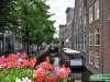 Olanda-Delft-050