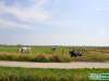 Olanda-Giethoorn-041