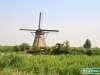 Olanda-Kinderdijk-014