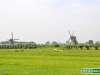 Olanda-Kinderdijk-016