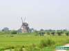 Olanda-Kinderdijk-020