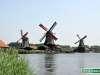 Olanda-Zaanse-Schans-034
