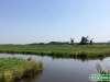 Olanda-Zaanse-Schans-061