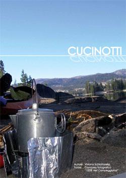 Vecam-Cucinotti-2015