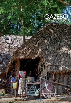Vecam-Gazebo-2015