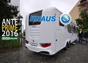 Knaus-2016