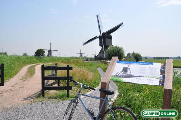 Olanda-Kinderdijk-019