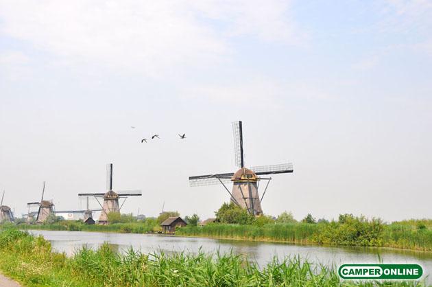 Olanda-Kinderdijk-030