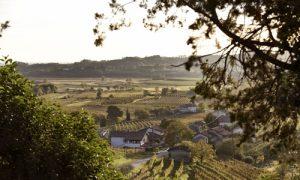 """""""Jazz&Wine of Peace"""", in camper sul Collio italiano e sloveno"""